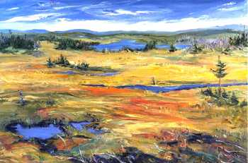 Barrens II, original oil painting by Brenda McClellan