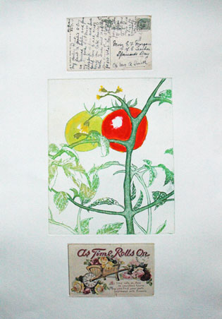 j_morgan_Tomato-Flowers jpg